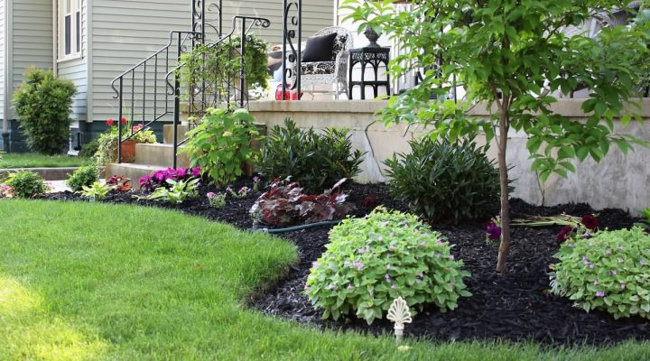 Long Narrow Flower Bed Design Ideas for Beautiful Front Look of a House.