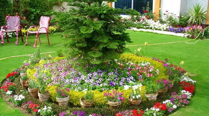 The Wonderful Flowerbed Ideas for the Best Impression.