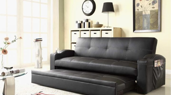 Discovering the Best Ideas of Pull out Sofa Beds Minimalist.
